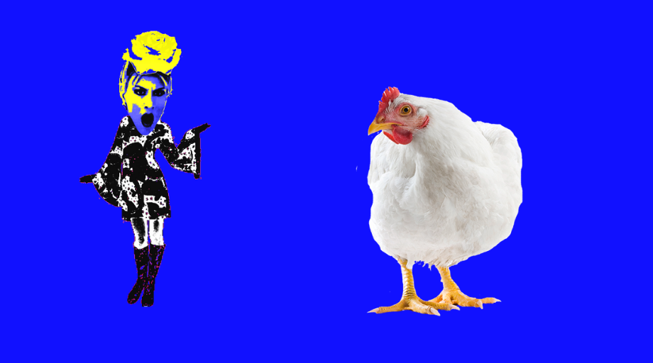 The poultry